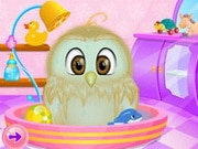 Baby Owl Care