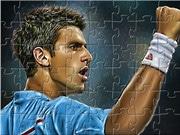 Djokovic Puzzle