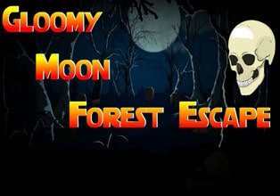 Gloomy Moon Forest Escape