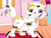 Messy Kitten Caring