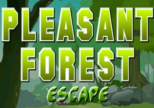 Pleasant Forest Escape