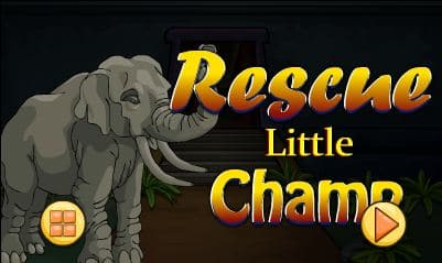 Rescue Little Champ