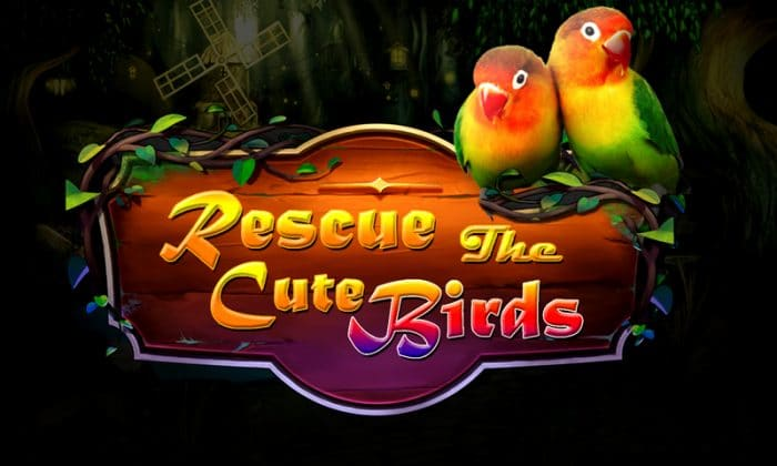 Rescue the bird