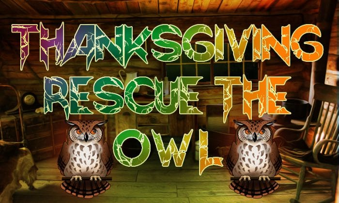 Thanksgiving Rescue The Owl