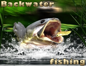 Backwater Fishing