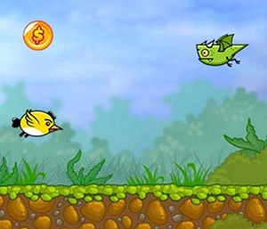 Birds attacks